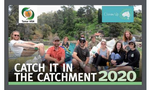 Catch it in the Catchment 2020