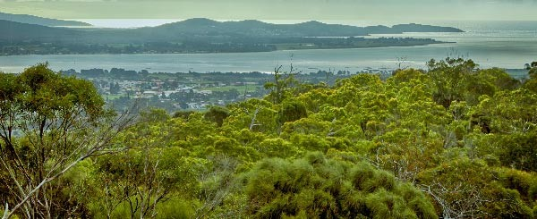Mt George Scenic Look Out and Historic Semaphore